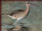 original oil painting of a sand piper