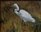 janet powers original oil painting of an egret